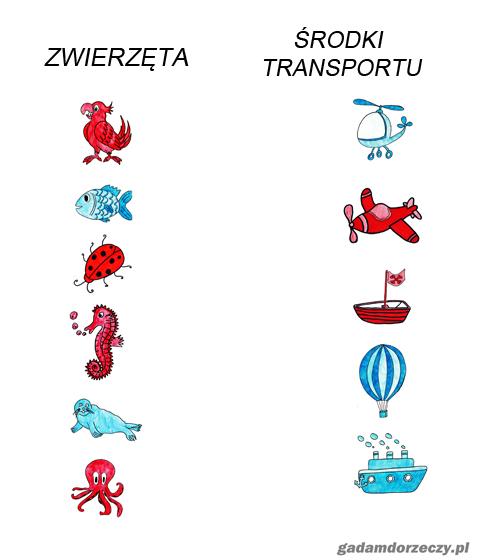 zwierzeta-i-srodki-transportu