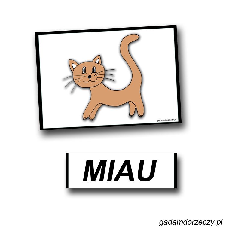 wyrażenia-dźwiękonaśladowcze-miau-miau